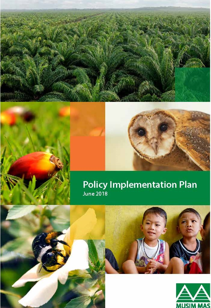 MM Policy Implementation Plan_Page_1.jpg