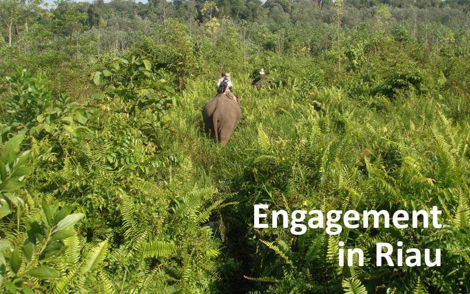 Engagement in Riau.jpg